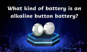 kind of battery
